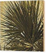Palm Leaves 2 Wood Print