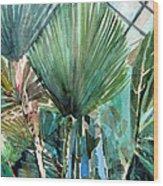 Palm Light Wood Print