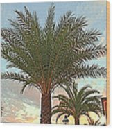 Palm On The Avenida Wood Print