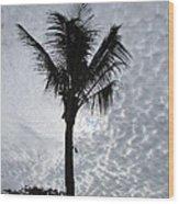 Palm Shadow Wood Print