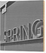 Palm Springs 2 Wood Print