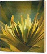 Palm Sunday Wood Print