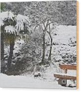 Palm Tree And A Bench With Snow Wood Print