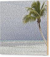 Palm Tree On The Tropical Beach Wood Print
