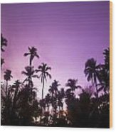 Palm Trees At Dusk, Malaysia, Southeast Wood Print
