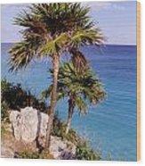 Palm Trees At Tulum Wood Print