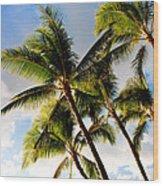 Palm Trees At Twilight Wood Print