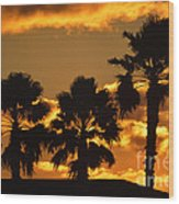 Palm Trees In Sunrise Wood Print