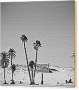 Palm Trees In The Sahara Desert Wood Print