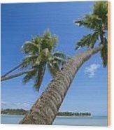Palm Trees On A Tropical Beach, Fiji Wood Print