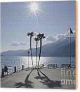 Palm Trees With Shadows On The Lakefront Wood Print