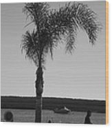 Palm Walk Wood Print