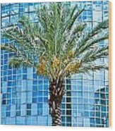 Palme Tree And Blue Building Wood Print