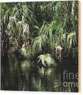 Palmettoes In The River Wood Print