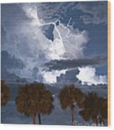 Palms And Lightning 4 Wood Print