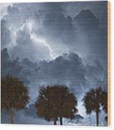 Palms And Lightning 5 Wood Print