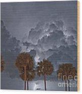 Palms And Lightning 7 Wood Print