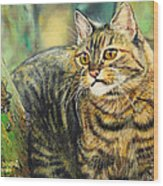 Palo Verde Kitty Wood Print