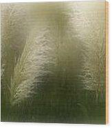 Pampas Dream Wood Print