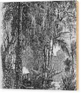 Panama Railway, 1875 Wood Print