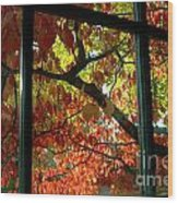 Pane Frames Wood Print