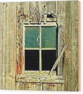 Paneless Wood Print