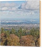 Panorama Of Dublin City And The Dublin Bay Wood Print