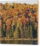 Panorama Of Trees Along The Waters Edge Wood Print