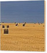 Panoramic Of A Straw Field, Near Val Wood Print