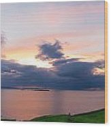 Panoramic View From Dunluce Castle Wood Print