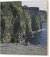 Panoramic View Of Cliffs, Cliffs Of Wood Print