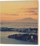 Panoramic View Of Niteroi Wood Print
