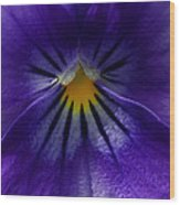 Pansy Abstract Wood Print