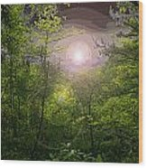 Paradise At Dawn Wood Print