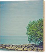 Paradise Cove Wood Print