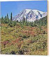 Paradise In Fall On Mt. Rainier 2 Wood Print