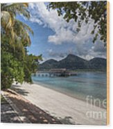 Paradise Island Wood Print by Adrian Evans