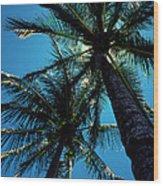 Paradise Island Wood Print by Mike Flynn