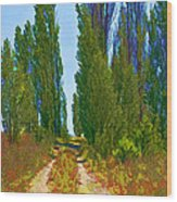 Paradise Road Wood Print