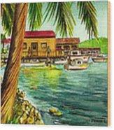 Parguera Fishing Village Puerto Rico Wood Print