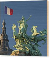 Paris Horse Statue Wood Print