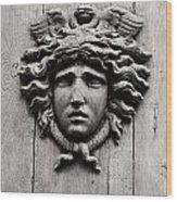 Paris Mademoiselle Wood Print
