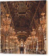 Paris Opera House Vi Wood Print