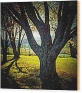 Paris Tree Wood Print