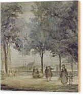 Paris: Tuilerie Gardens Wood Print