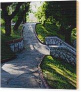 Park - Parque Wood Print