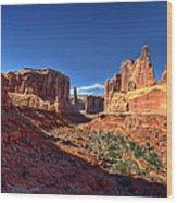 Park Avenue 1 Arches National Park Wood Print