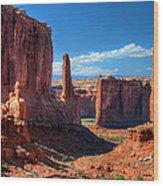 Park Avenue 2 Arches National Park Wood Print
