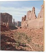 Park Avenue At Arches National Park In Utah Wood Print