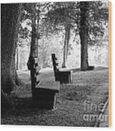 Park Bench In Black And White Wood Print